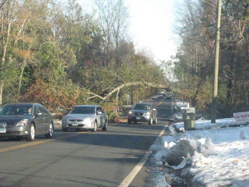 It took crews 4 days to figure out how to take down this tree. Their first attempt blocked the entire road, instead of just half.