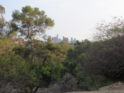 Elysian Park, Echo Park in Los Angeles
