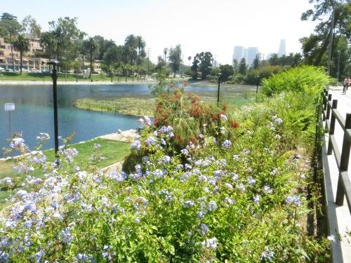 Echo Park Lake, Los Angeles