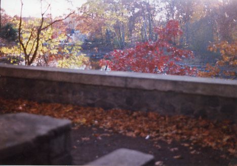 The beauty of the stone wall and pond, as it once was. - circa 1994.